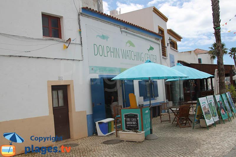 Visite organisée pour voir des dauphins à Ferragudo