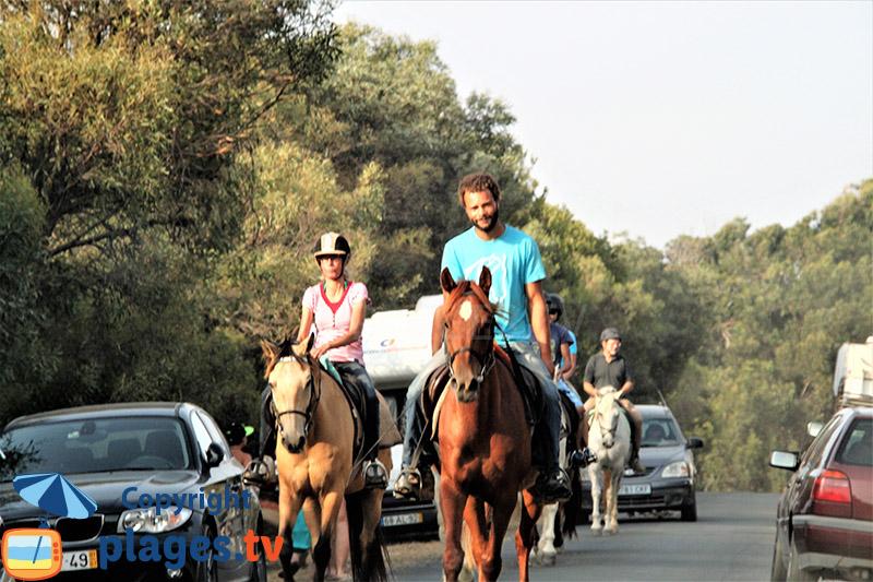 Promenade à cheval à Porto Covo - Portugal