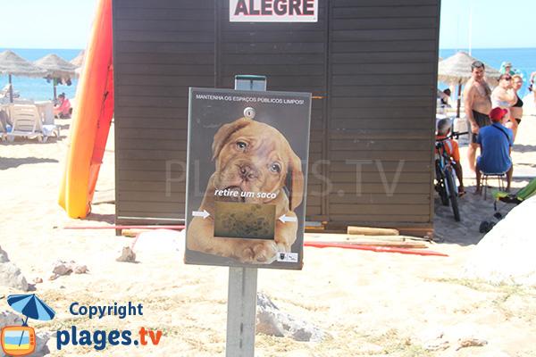 Plage autorisée aux chiens au Portugal à Quarteira