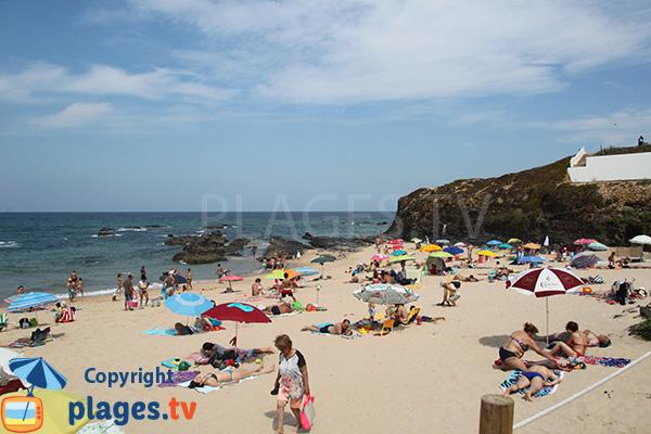 Plage d'Almograve Norte au Portugal