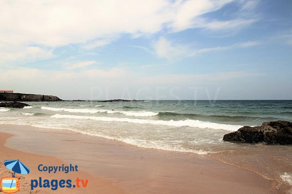 Vue sur les falaises au sud de la plage d'Almograve Sul - Portugal