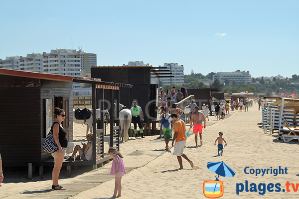 Locations de matériel sur la plage Alvor à Portimao