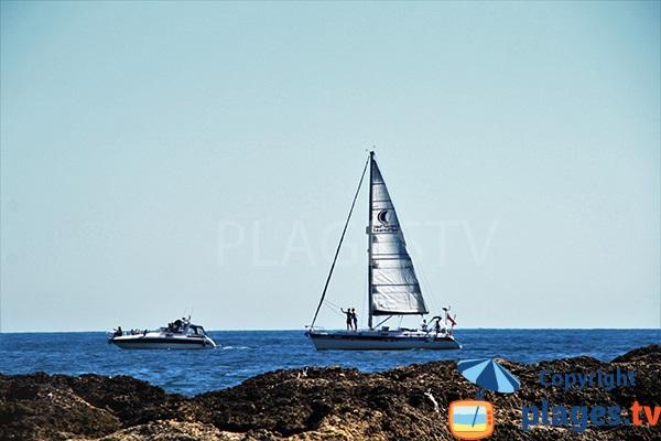 Voiliers dans la plage Aveiros à Albufeira