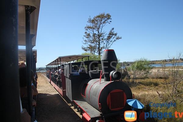 Petit train pour aller à la plage de Barril - Portugal
