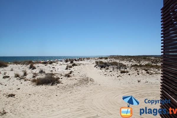 Dunes de l'ile de Cabanas - Portugal