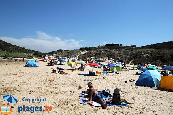 Dunes autour de la plage de Carvalhal à San Teotonio - Portugal