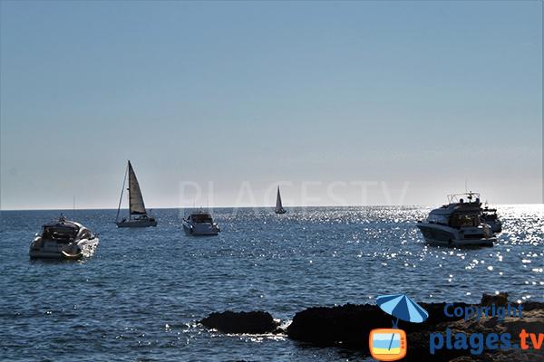 Pêche en mer à Albufeira