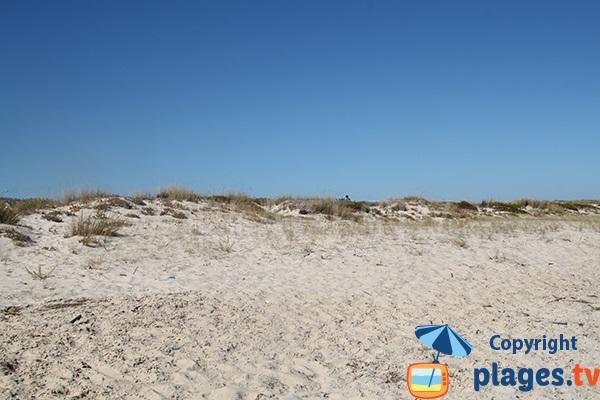 Dunes de la plage de Homem Nu sur l'ile de Tavira - Portugal