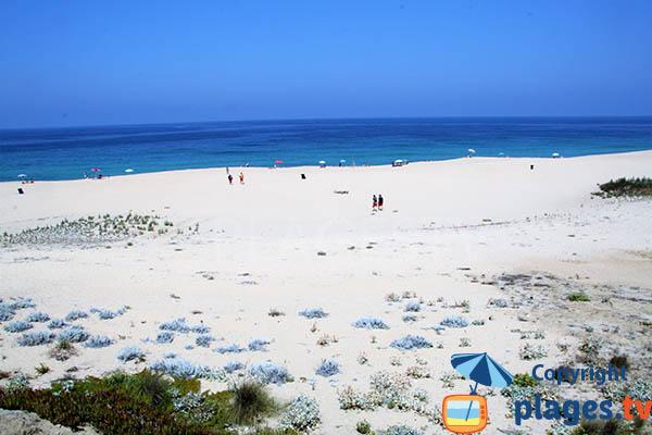 Dunes et plage de la Costa do Norte à Sines - Portugal