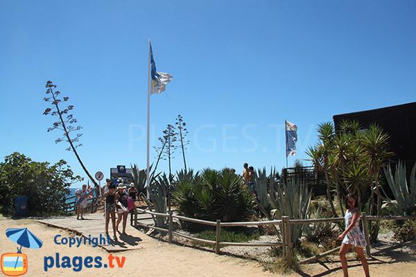 Rebords de la plage de Rocha Baixinha Poente