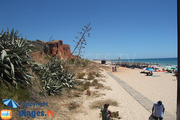 Photo de la plage de Rocha Baixinha Poente à Albufeira