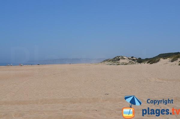 Plage avec des dunes - Salgado au Portugal