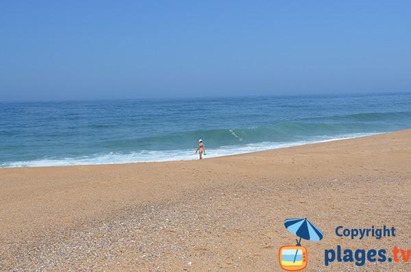 Baignade sur la plage de Salgado au Portugal