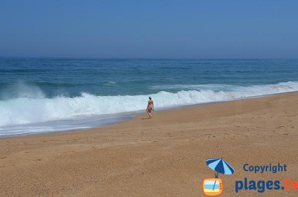 Vagues sur la plage de Salgado à proximité de Nazaré - Portugal