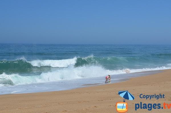 Grosses vagues sur la plage de Salgado au Portugal