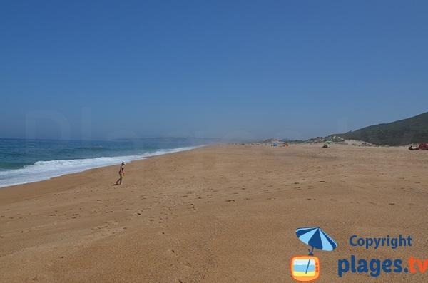 Belle plage sauvage - Salgado - Portugal