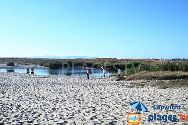Zone naturelle autour de la plage de Salgados à Albufeira