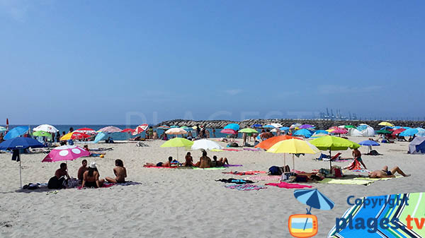 plage de Sao Torpes à Sines - Portugal