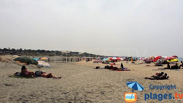 plage à côté du port de Sines - Portugal