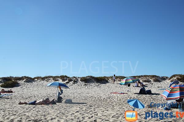 Fréquentation de la plage de Terra Estreita à ilha de Tavira en aout