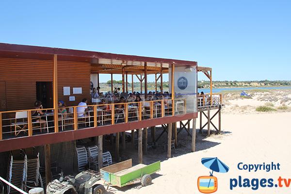 Bar restaurant sur la plage de Terra Estreita à ilha de Tavira - Portugal