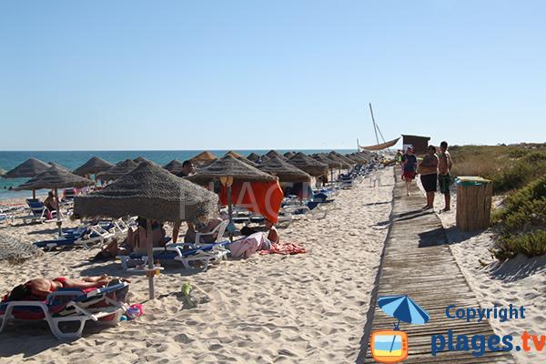 Accès à la plage de Terra Estreita à ilha de Tavira - Portugal