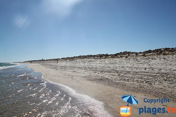 Plage peu fréquentée sur l'ile de Tavira - Portugal