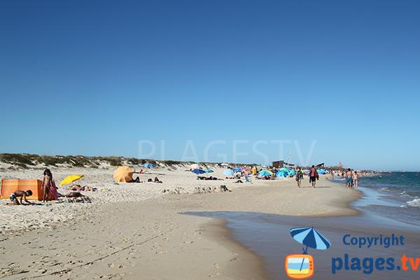 Photo de la plage de Terra Estreita à ilha de Tavira - Portugal