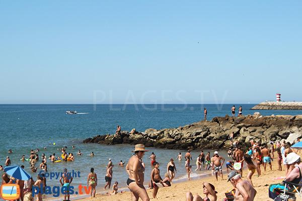 Pêche sur la plage Vidal - Quarteira