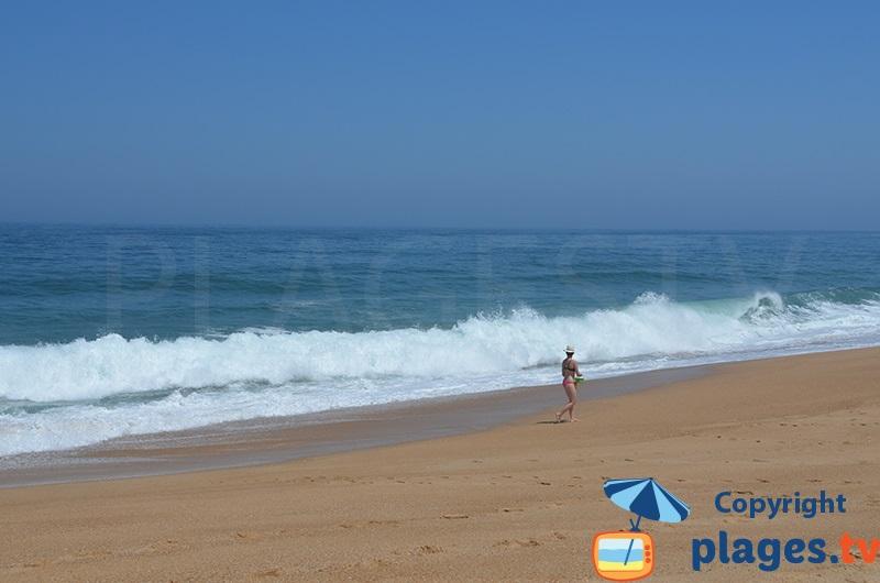 Vagues sur une plage du Portugal